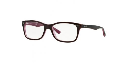 3ce43347c5 Gant or Ray-Ban Brown Eyewear | Opticians Direct