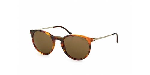 Polo Ralph Lauren PH 4096 501773 Jerry Tortoise