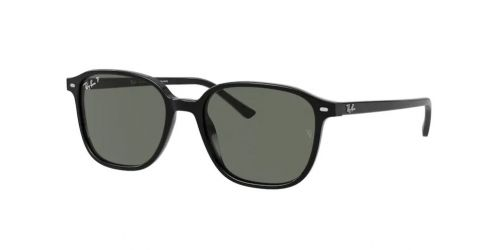 Ray-Ban LEONARD RB2193 901/58 Black Polarized