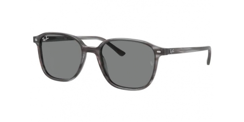 Ray-Ban Ray-Ban LEONARD RB2193 1314B1 Striped Grey