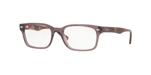ad63ce55ed Brown or Tortoise Ray-Ban Designer Frames
