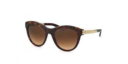 Dolce & Gabbana Dolce&Gabbana DG 4243 502/13 havana