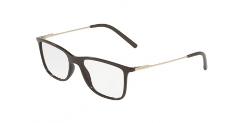 fb6383695d0f Dolce & Gabbana Brown, Nude or Pink Glasses