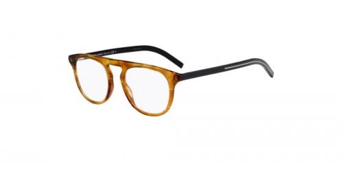 BLACKTIE249 BLACKTIE 249 P65 Brown Yellow Havana